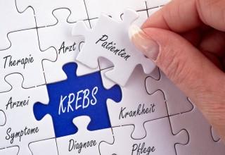 Puzzle Krebs